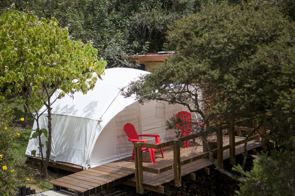 colombian-forest-hotel-glamping